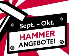 Hammer-Angebote bei Raab Karcher